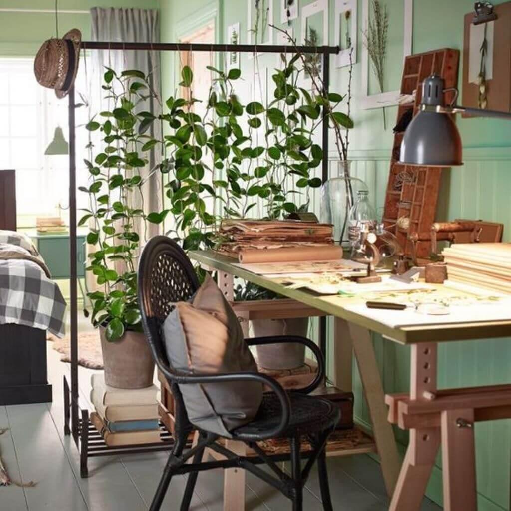 növény paraván, lakberendező, belsőépítész, Elszigetel és összeköt - a lakberendező szerint